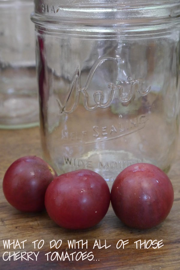 black-cherry-toms-with-a-jar